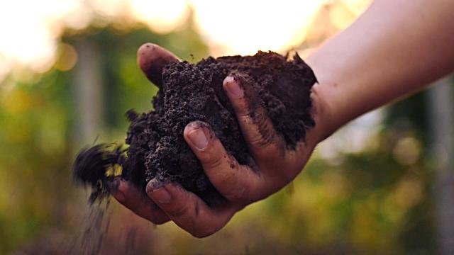 Edaphos solution for soil