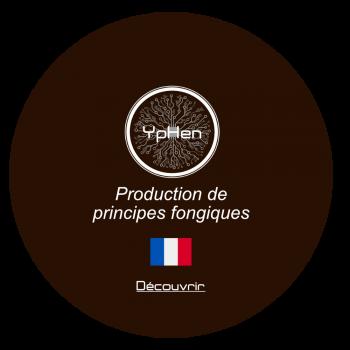 Boutton Yphen_Décourvrir