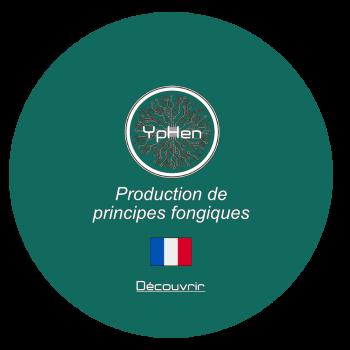 Boutton-Yphen_Décourvrir00
