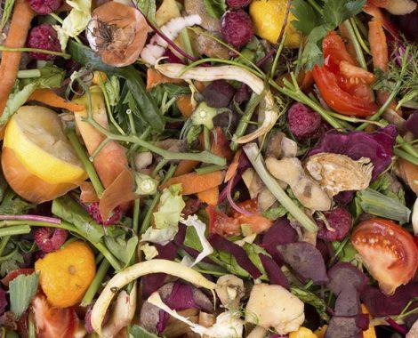 valorisation des déchets organiques