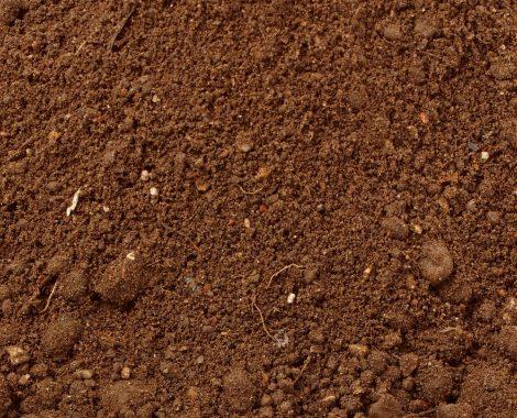 topsoil1.jpg